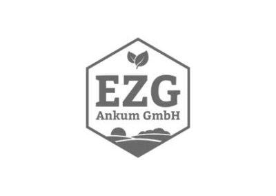 ezg-ankum.de