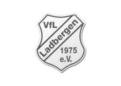 vfl-ladbergen.de