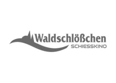 schiesskino-lienen.de